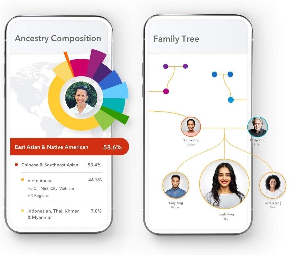 A phone screen showing a genetic breakdown of someone's DNA and another phone screen showing a family tree