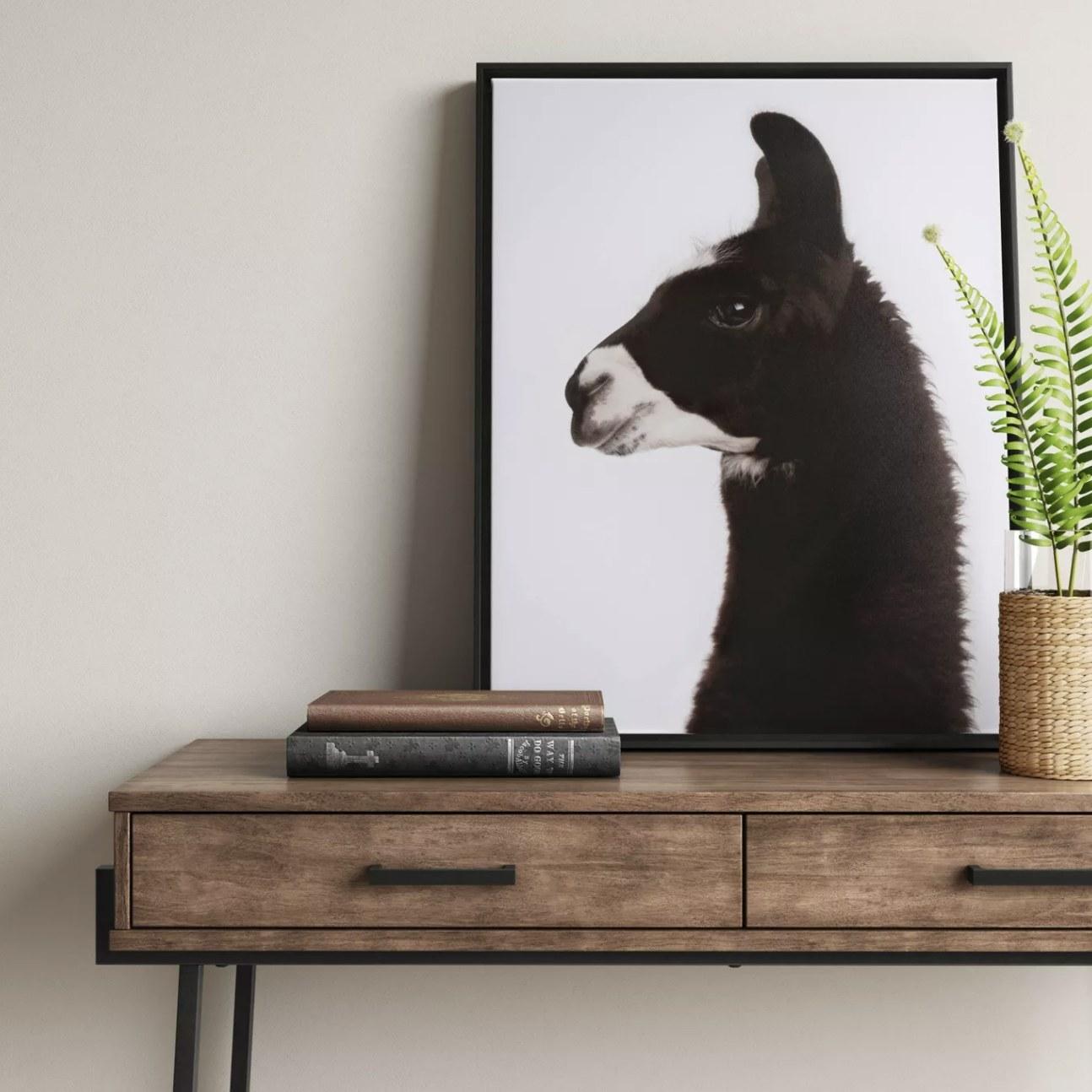 A llama canvas print on a console table