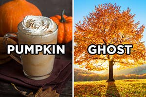 """On the left, a pumpkin spice latte labeled """"pumpkin,"""" and on the right, a tree in a field with fall leaves labeled """"ghost"""""""