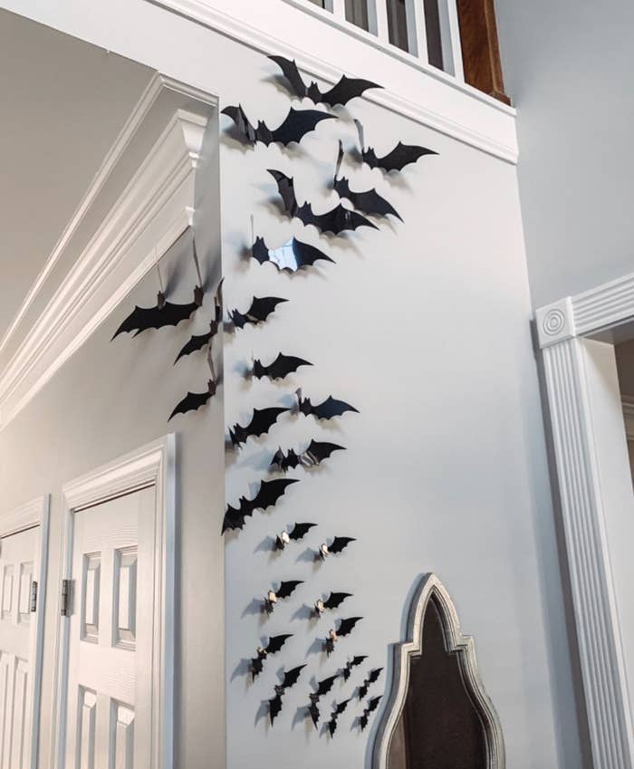 reviewer photo of black bats on a wall in their home