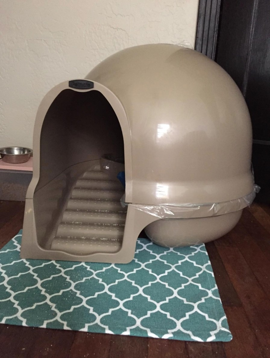 A reviewer's photo of the clean set cat litter box in titanium
