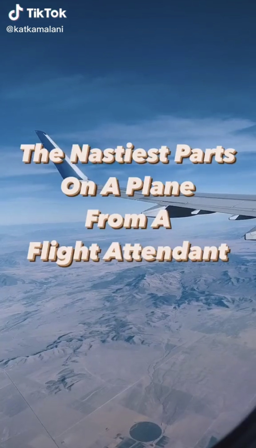 "Screenshot of a TikTok that reads: ""The nastiest parts on an airplane from a flight attendant,"""