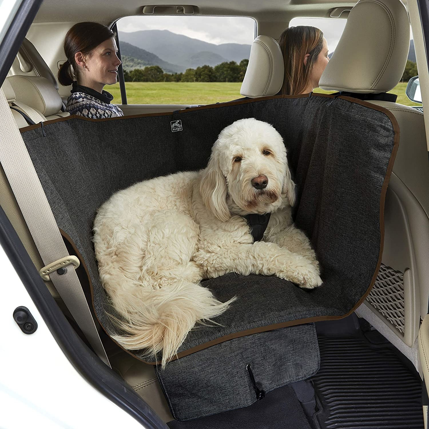 Large white dog sitting on the dark gray seat cover