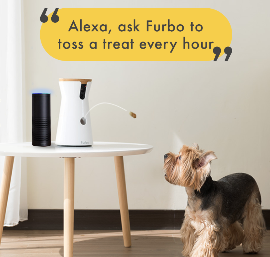 """A Furbo throwing a treat to a small dog with """"Alexa, ask Furbo to toss a treat every hour"""""""