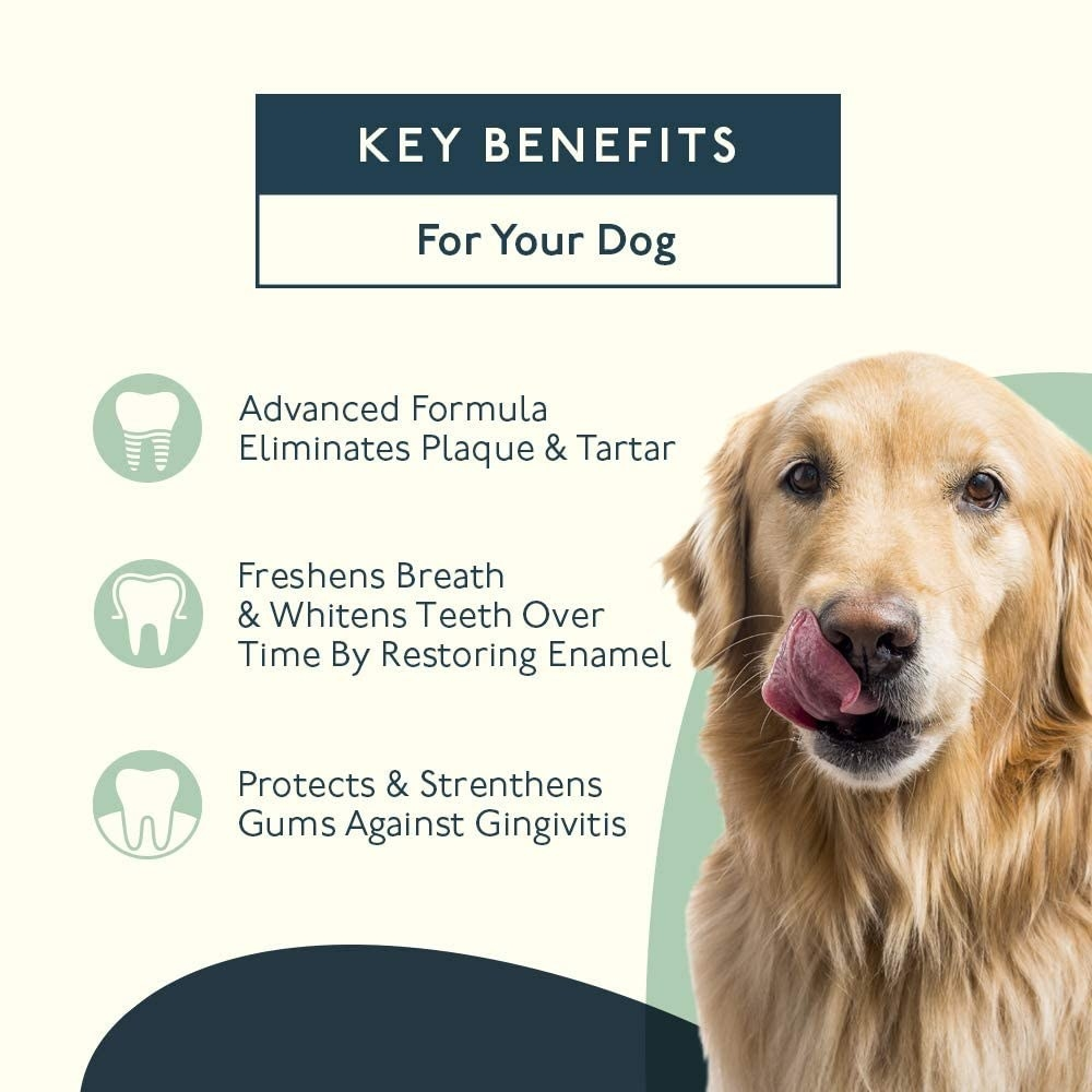 Infographic listing the benefits, including eliminating plaque and tartar and freshening breath