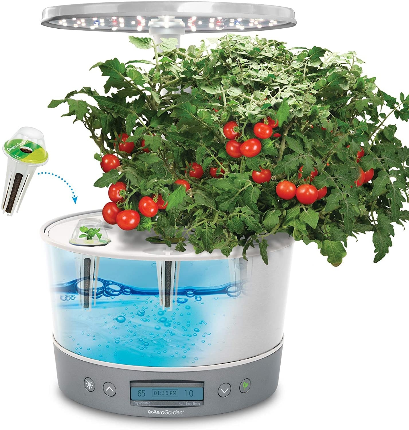 The inside of the Aerogarden filled with water