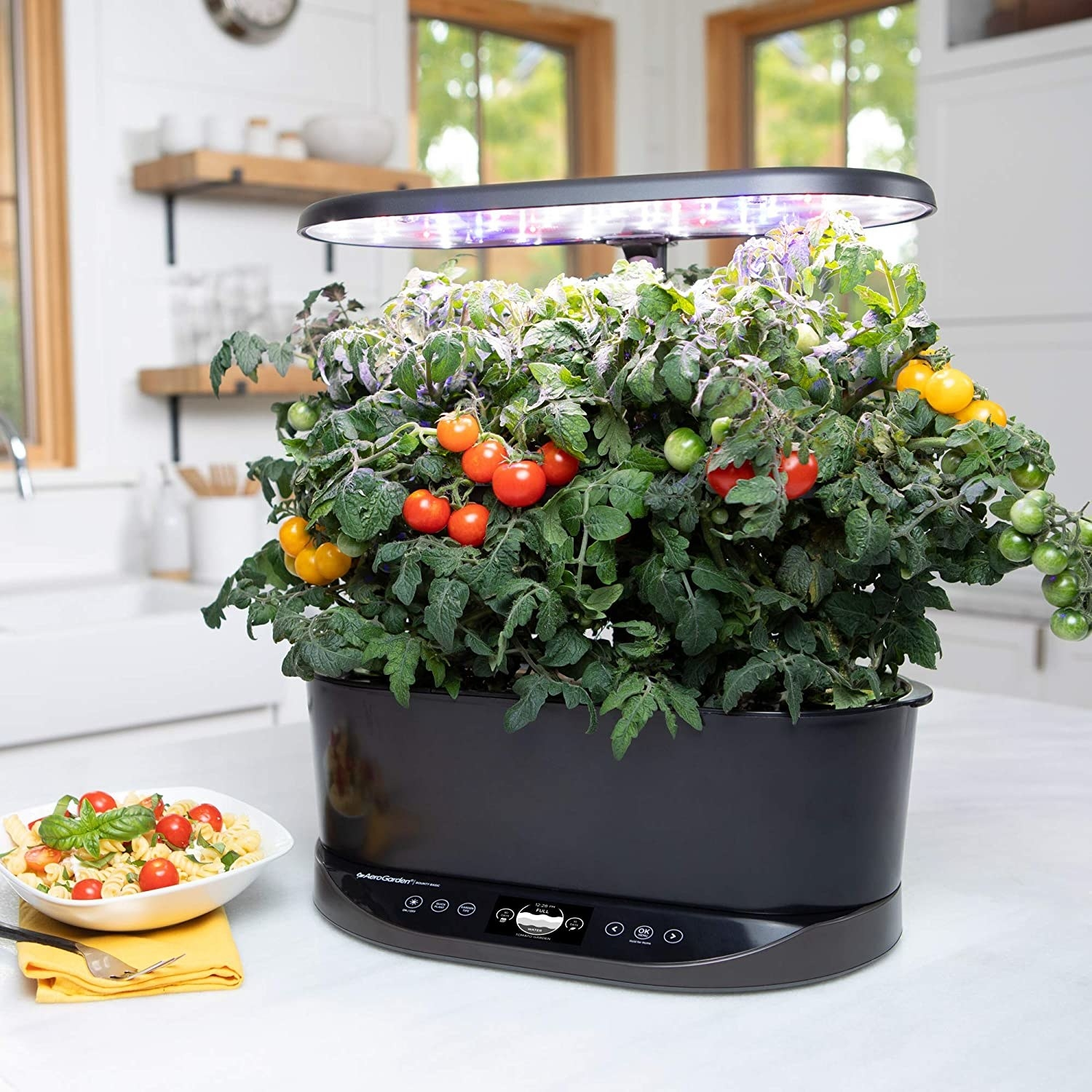 The Aerogarden with tomatoes growing inside of it