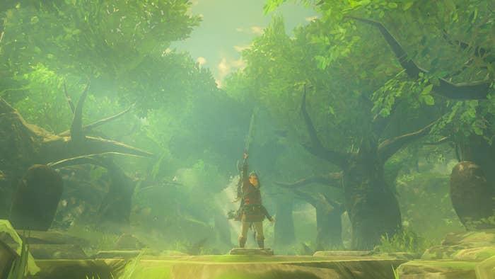 link holds up sword