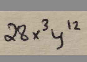 28x^3y^12