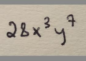 28x^3y^7
