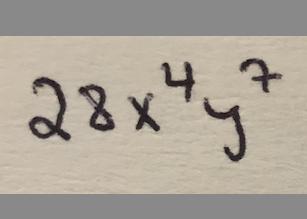 28x^4y^7