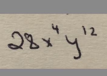 28x^4y^12