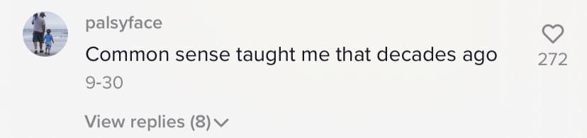 Screenshot of a TikTok comment