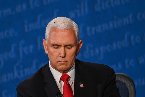 Mike Pence with the fly on his head