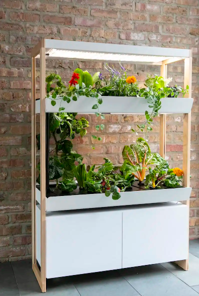 A minimalist, bookshelf-sized planter with shelves for hidden filtration system and storage, two growing decks, lights, and dozens of full grown plants