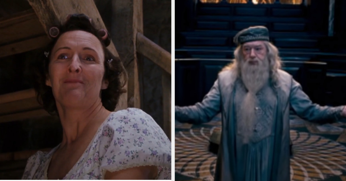 "Petunia scolding Hagrid in ""Sorcerer's Stone"" and Dumbledore speaking at Harry's hearing in ""Order of the Phoenix"""