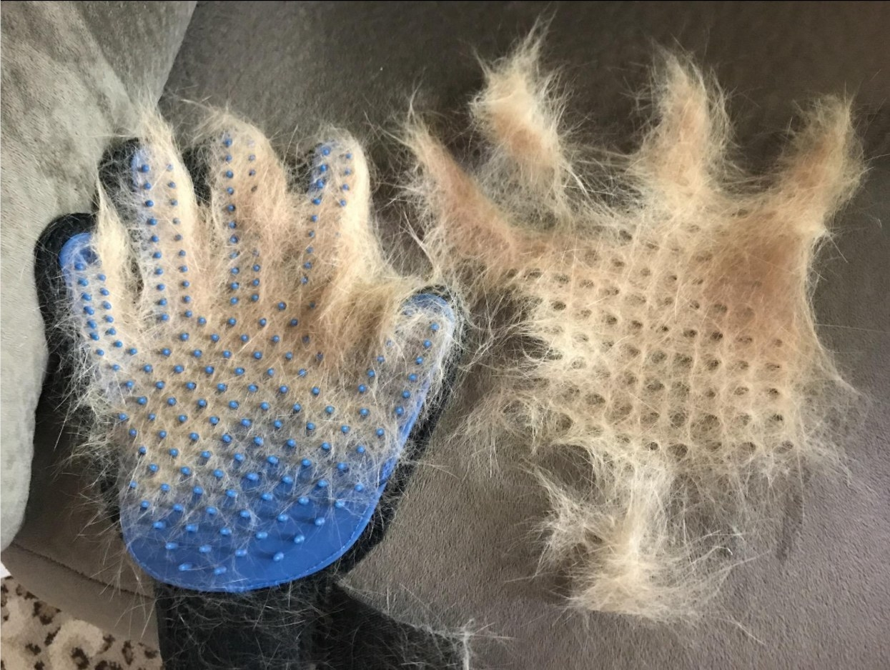 The grooming gloves after being used on a pet to show the amount of fur it removes
