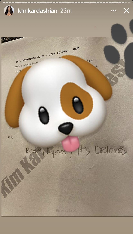 Kim's Paw Patrol script