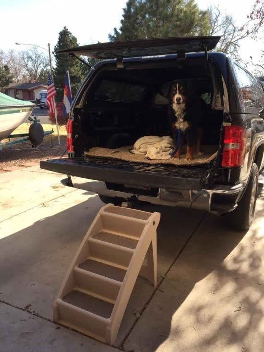 A reviewer's image of the pet stairs leading into their SUV