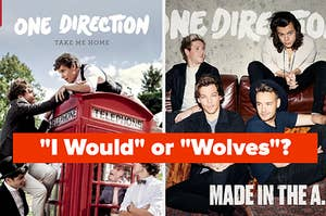 One Direction album covers from take me home and made in the am