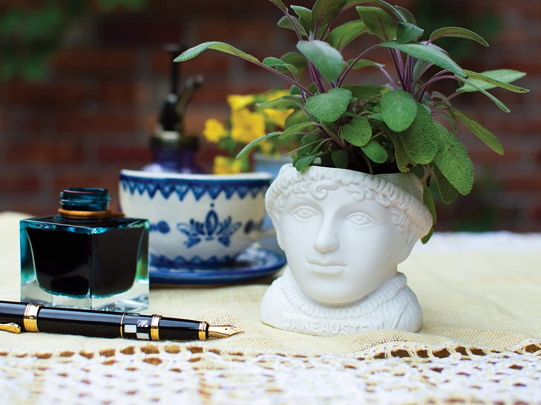 the white planter pot