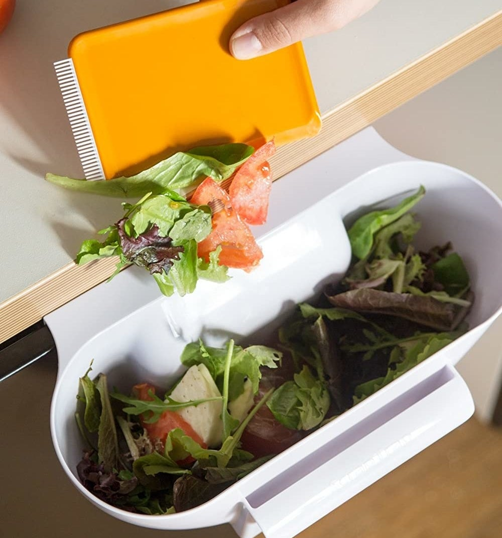 A person dumping salad scraps into the bin with the scraper