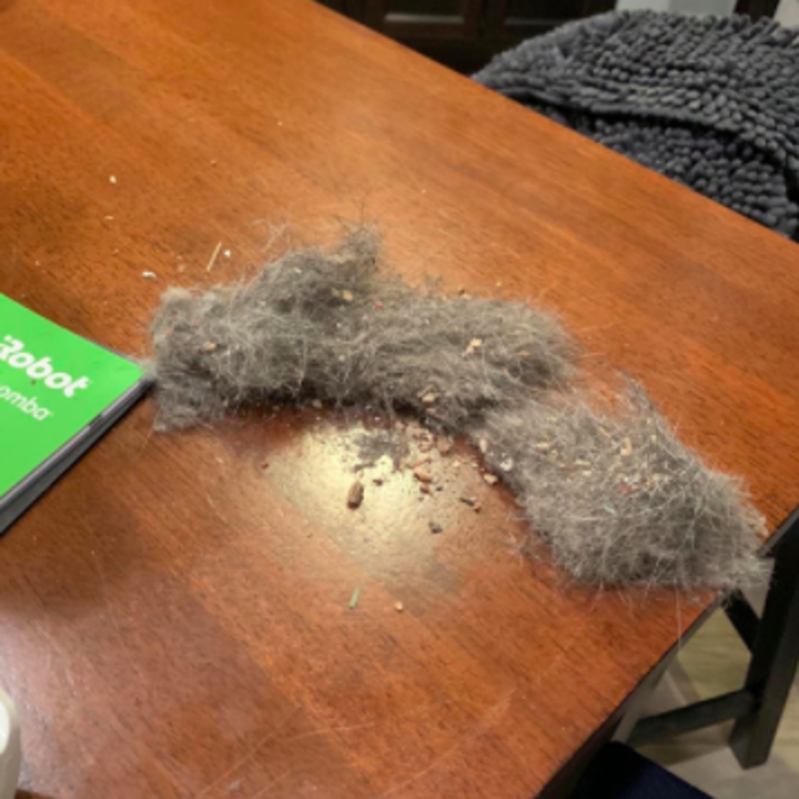 reviewer photo showing all the dirt, dust, and pet hair that came out of their iRobot roomba vacuum