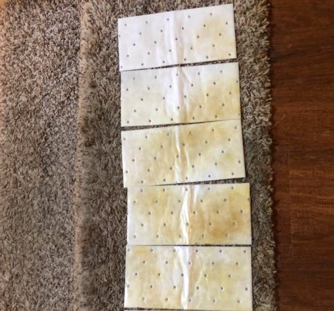reviewer photo showing cleaning pads absorbing stains from carpet