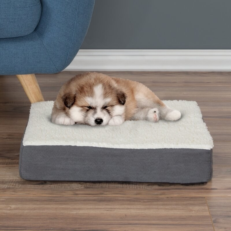 A puppy sleeps on the gray memory foam dog bed