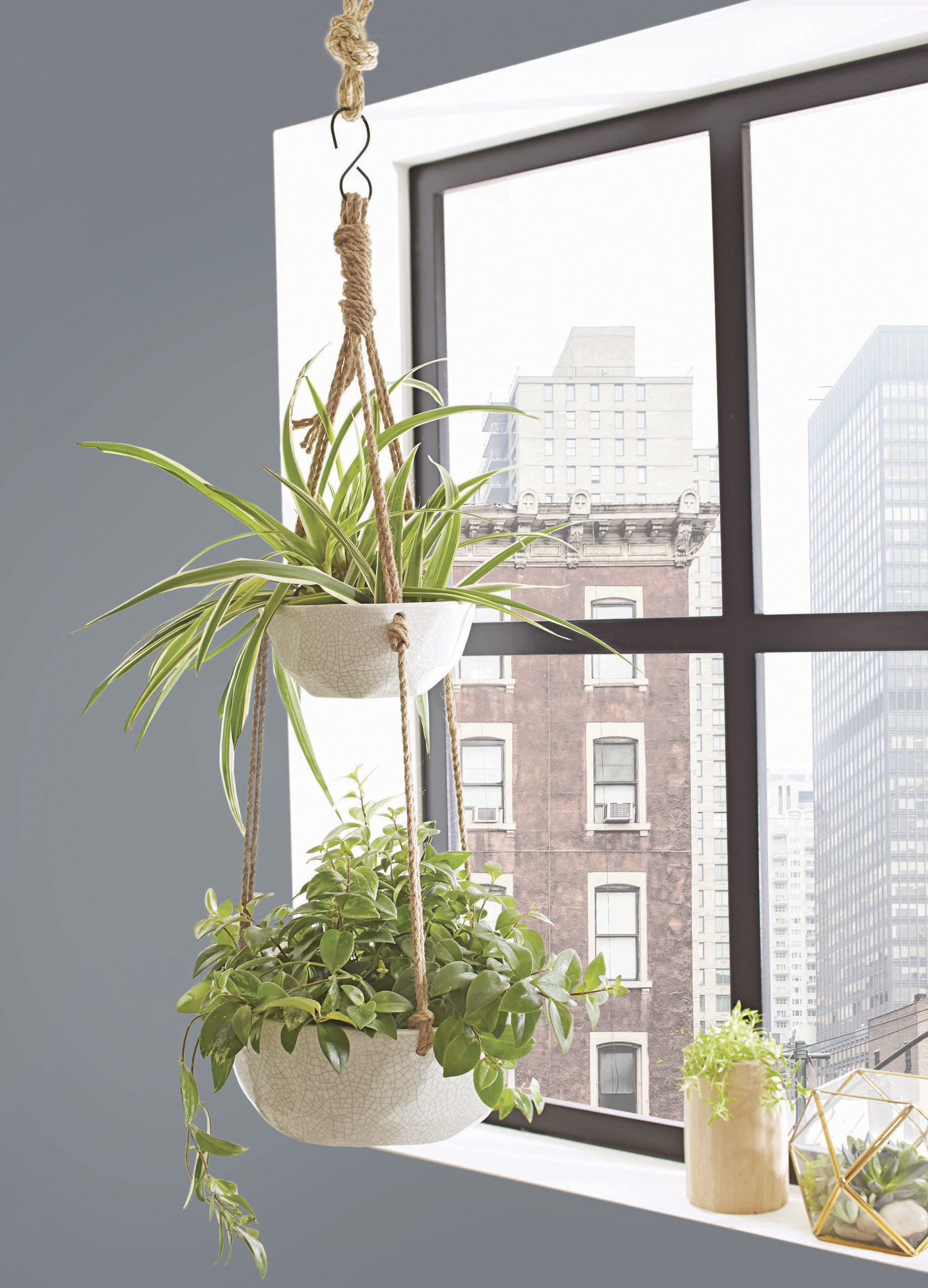 The plant hanger featured indoors by a window in an apartment