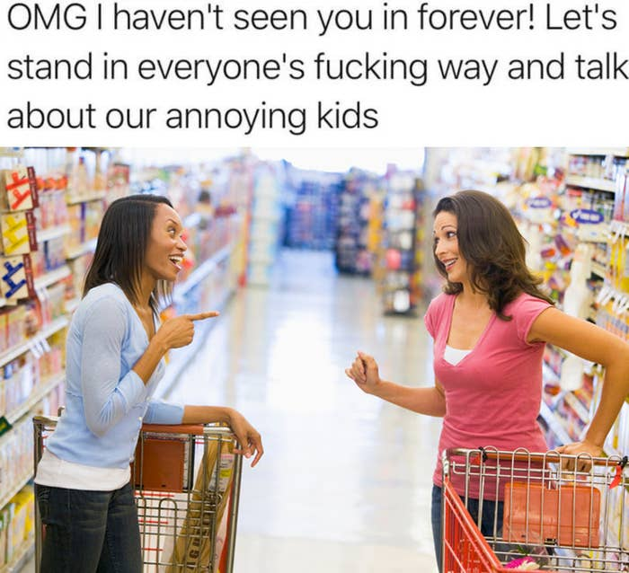 Meme of two people talking in an aisle with the text, OMG i haven't seen you in forever! Let's stand in everyone's fucking way and talk about our annoying kids