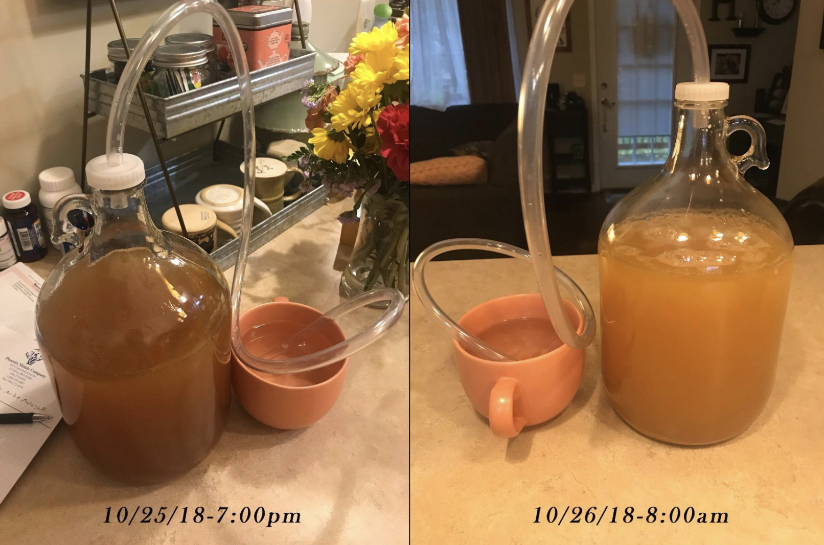 reviewer before and after photo of hard cider being made