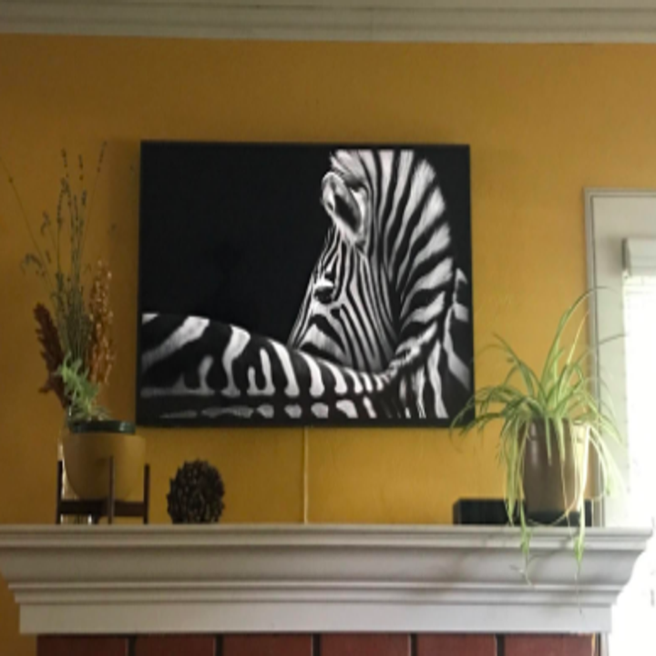 Reviewer with TV above mantel displaying detailed photograph of a zebra