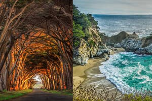 a stunning archway made of trees and a picturesque beach on a rocky shore