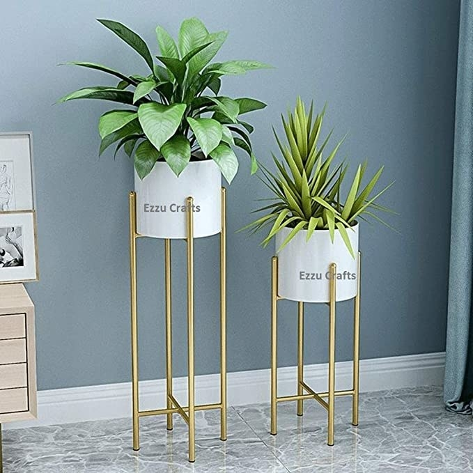 White plant holder with a gold stand against a blue wall.
