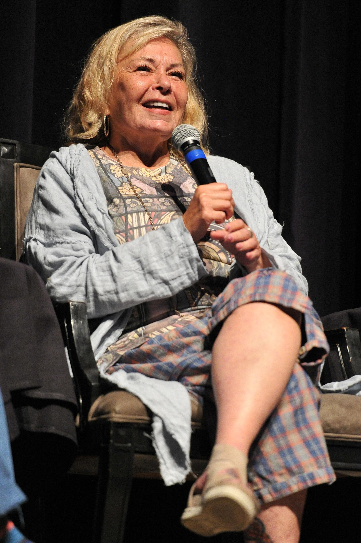 Roseanne speaking on a panel