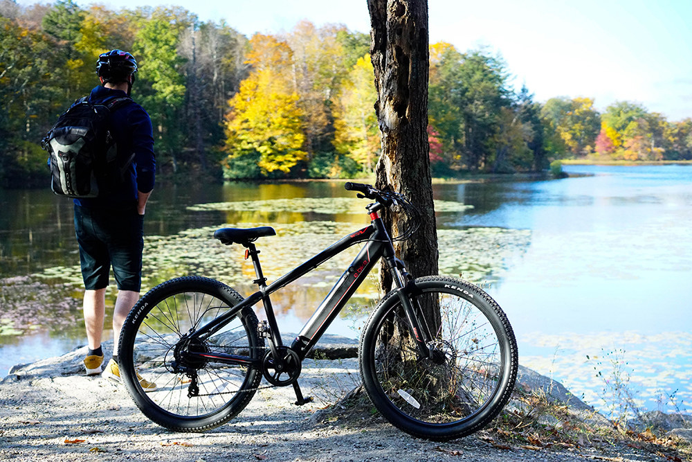 mountain e-bike leaning against a tree with a person looking over a lake