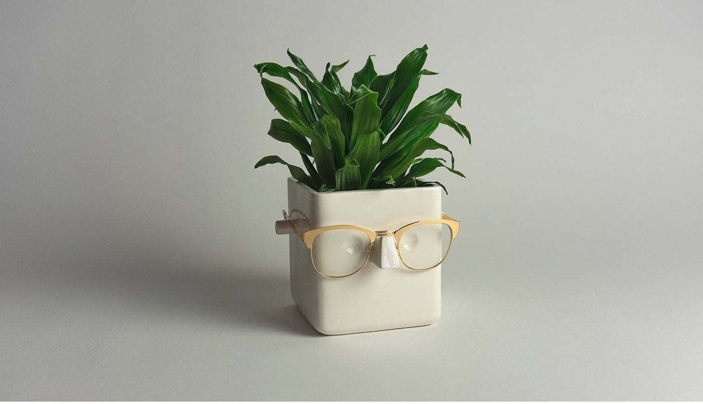 A small white cube-shaped planter, with pegs protruding from each side and a triangular nose area in front, so that you can hang your glasses