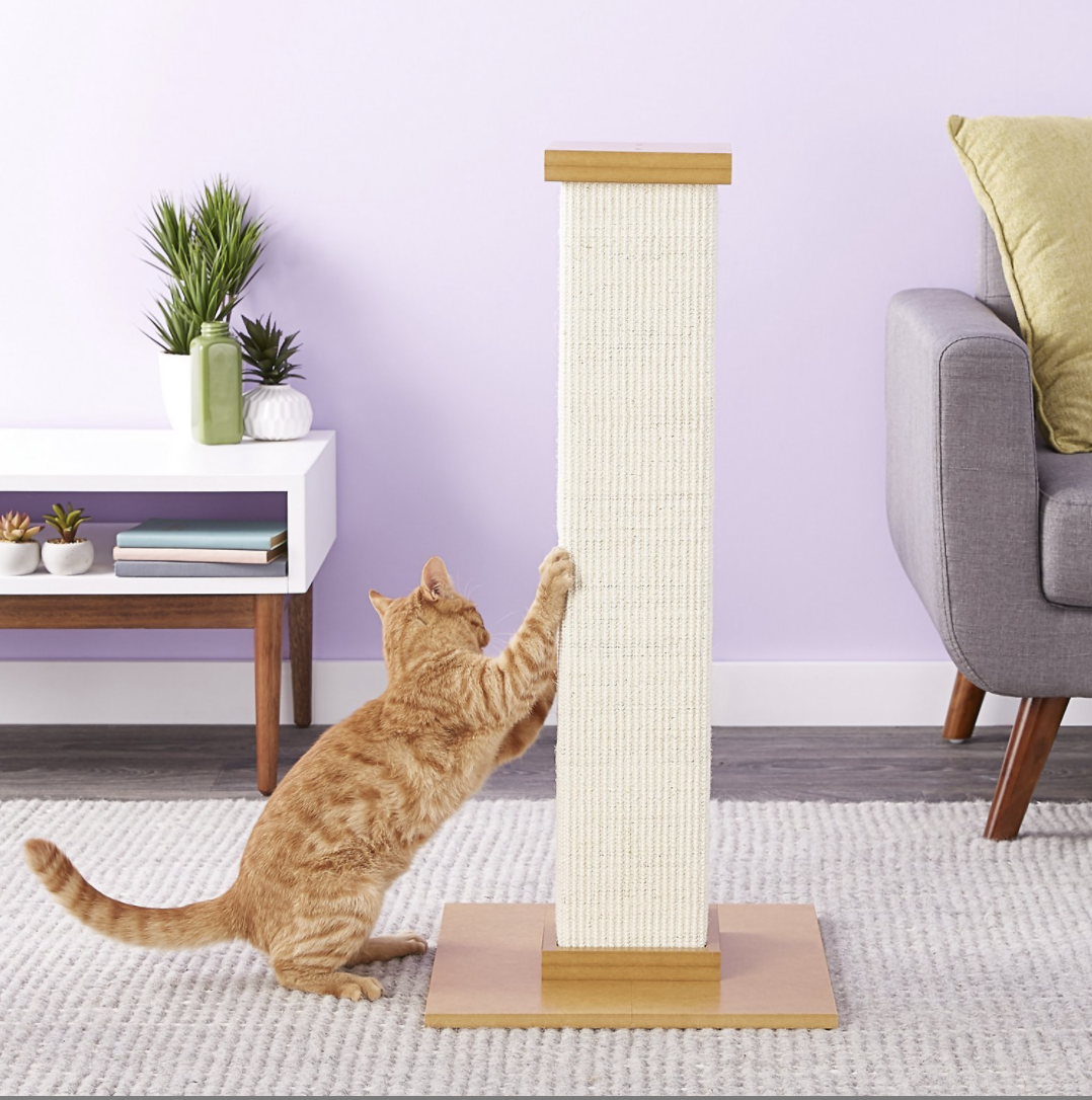 cat uses scratching post