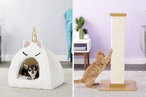 A dog in a unicorn pet bed, a cat scratching a cat post