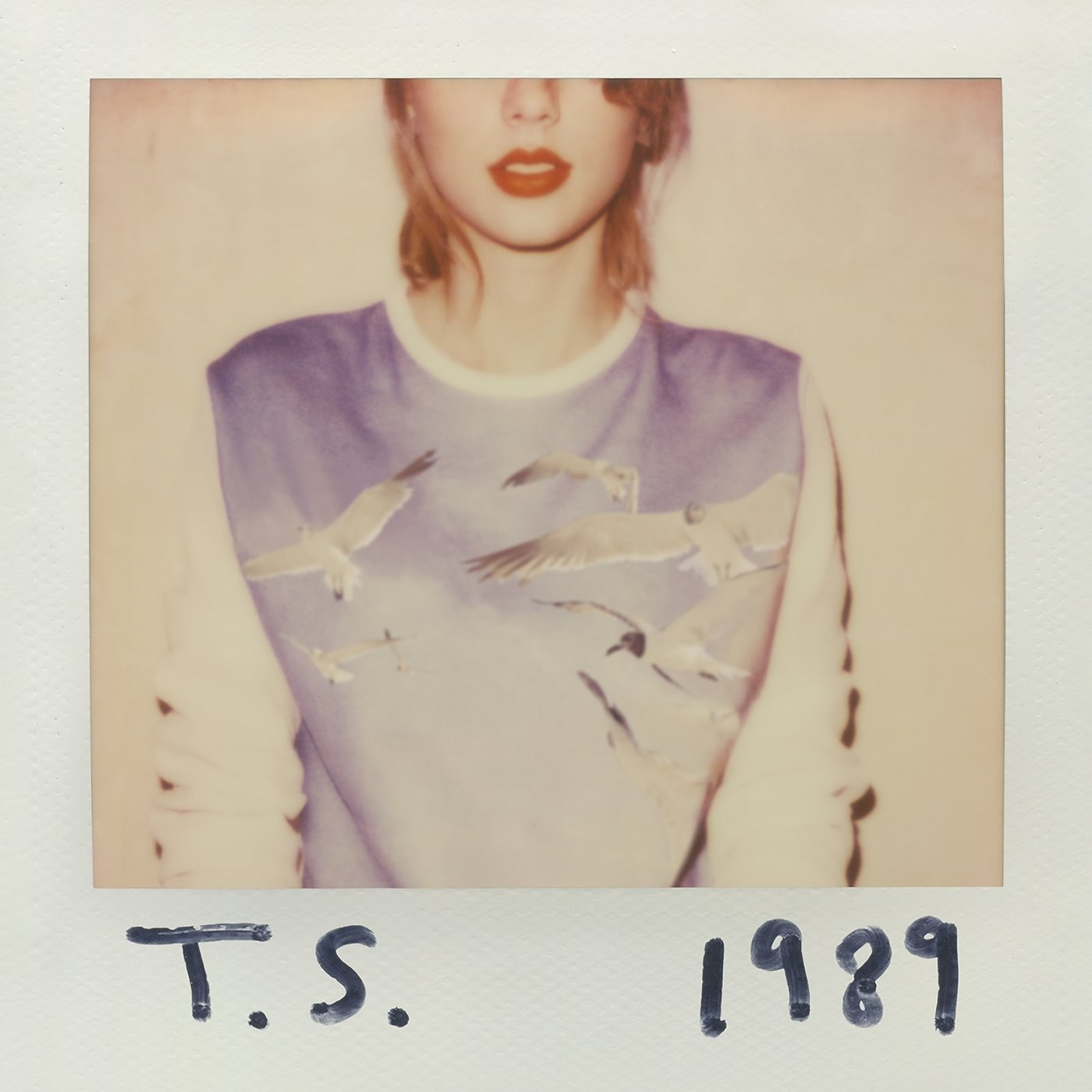 A polaroid of Taylor Swift in a bird sweater.