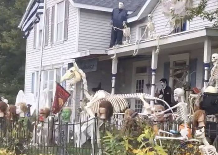 A yard featuring a skeleton of a horse and many other skeletons