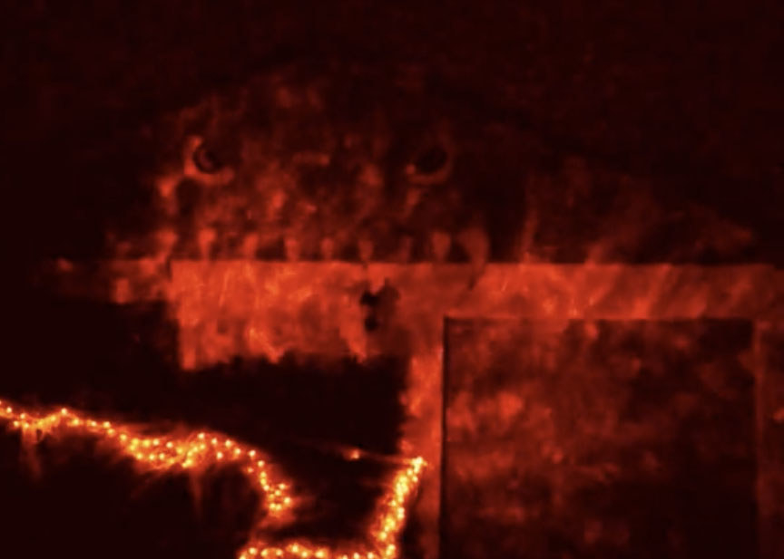 A home covered in red lights at night and a face can subtly be seen on the garage
