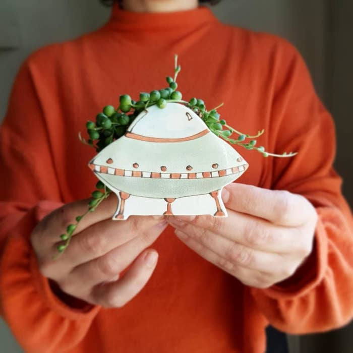 A person holding the UFO pot with a succulent inside
