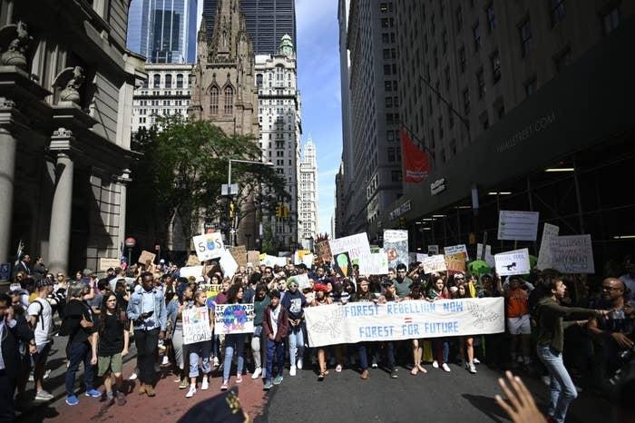 在纽约市的全球气候罢工的儿童