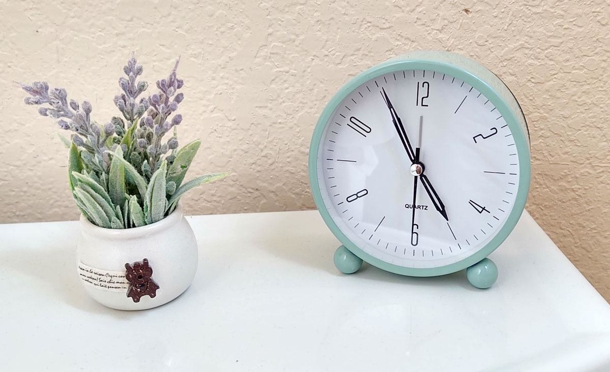 The alarm clock next to a plant