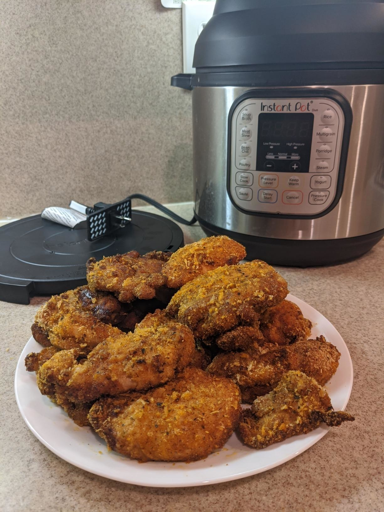 Reviewer picture of the circular-shaped InstaPot with a plate of breaded chicken in front of it