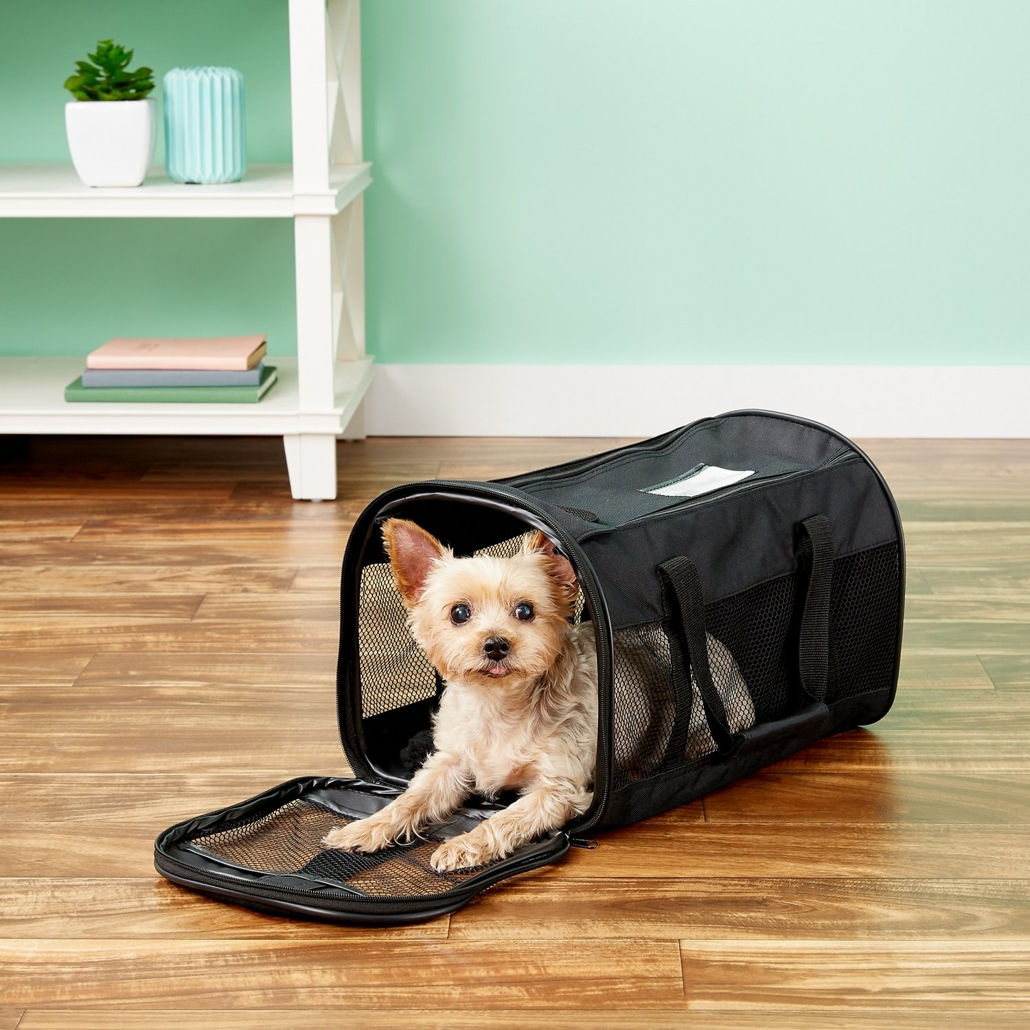 Small dog sitting inside the soft carrier