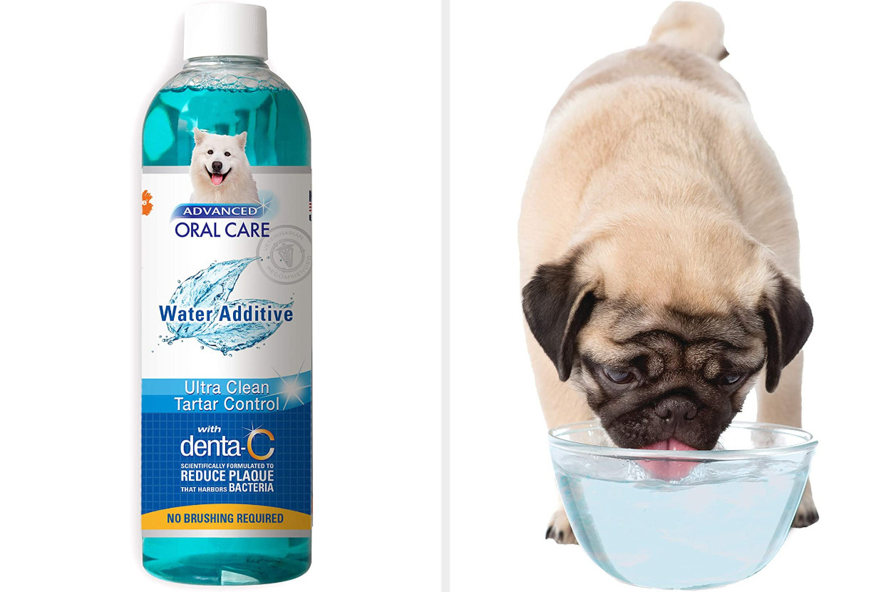 Side by side of the container and dog drinking bowl of water in which the remover has been added