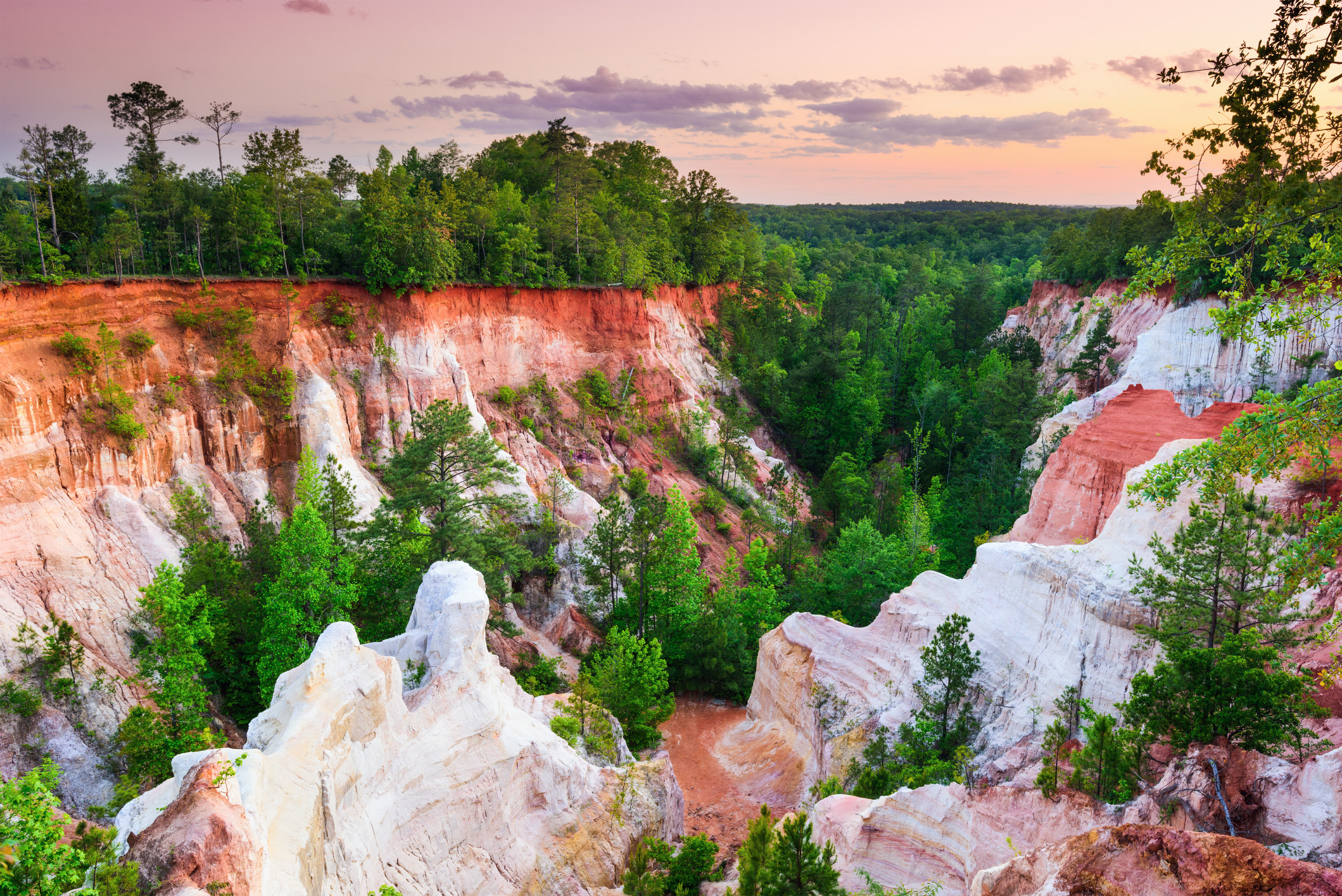 Red and white canyons covered with lush green trees